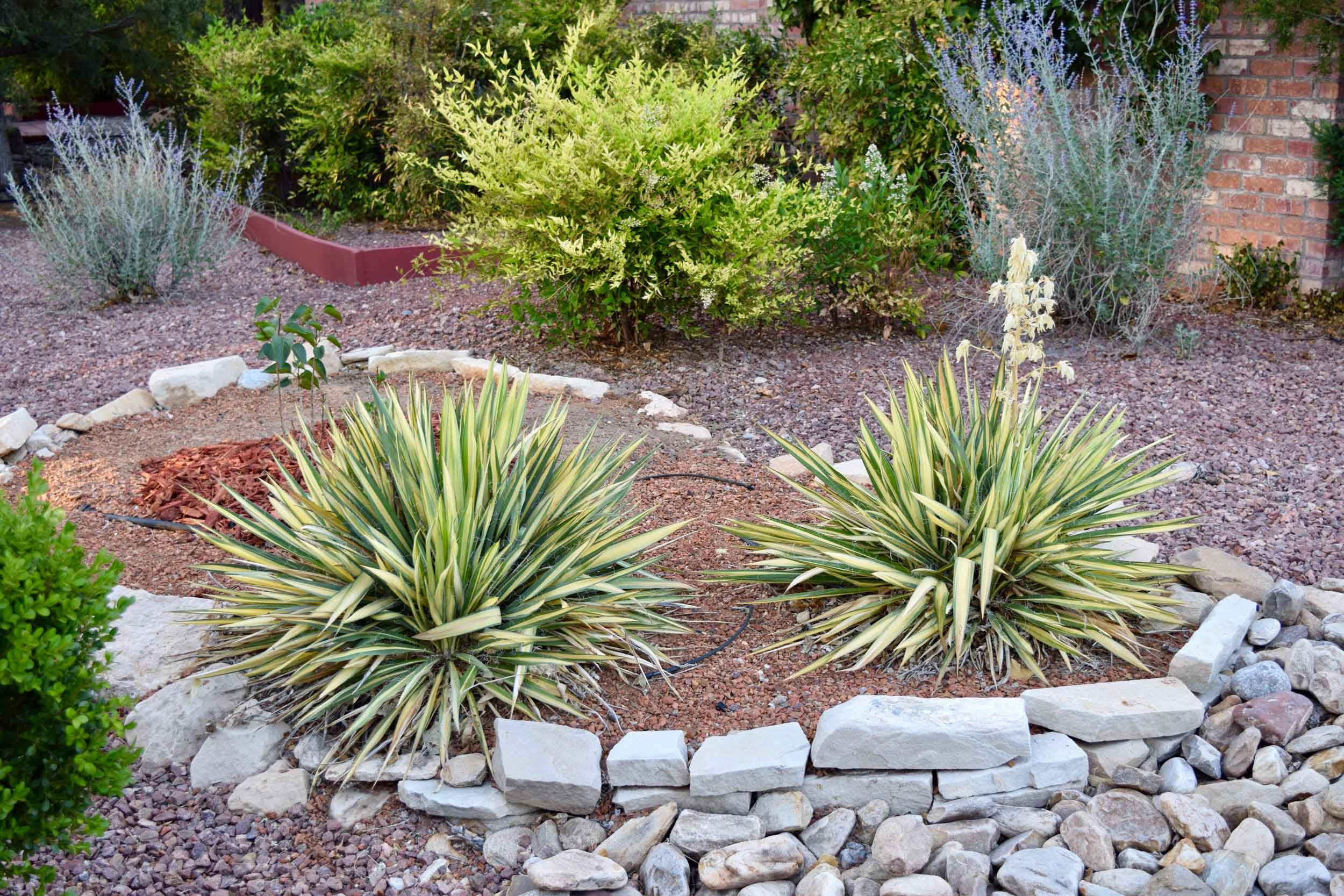 Altitude-Landscaping-Services-Hardscapes