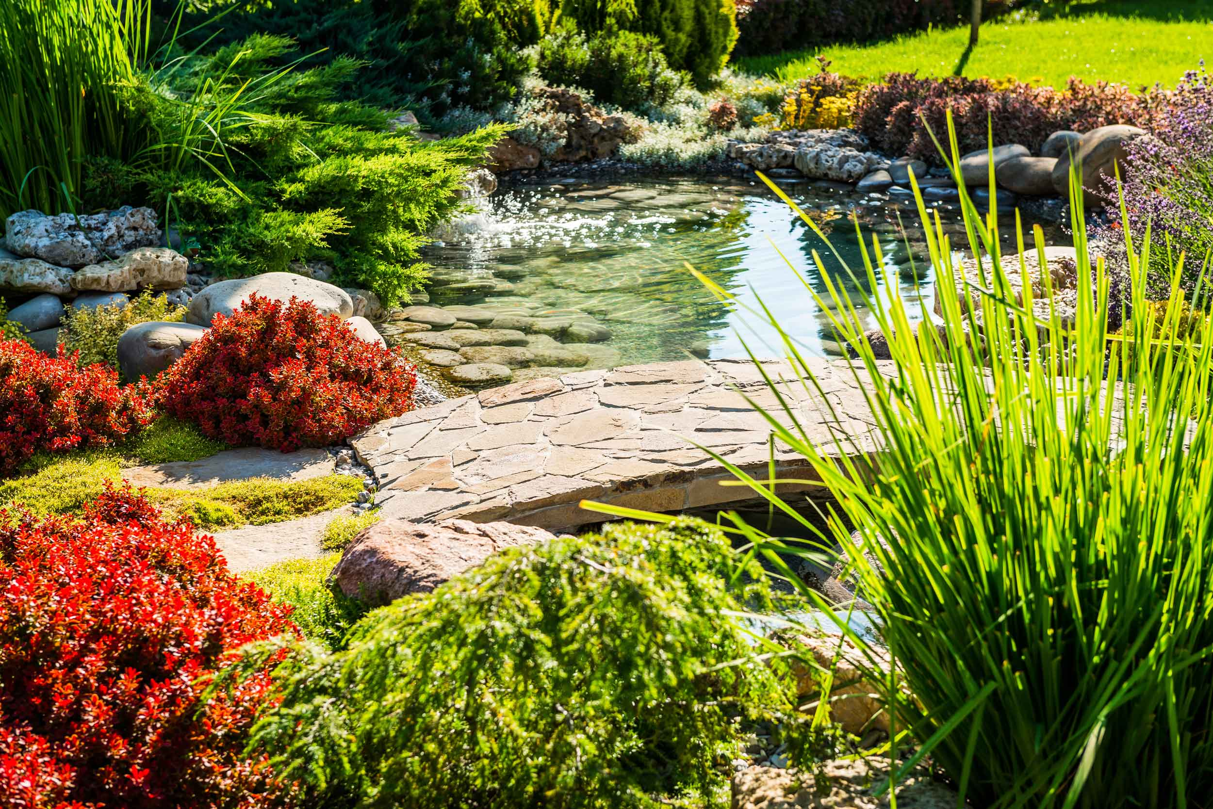 Altitude-Landscaping-Services-Water-Features