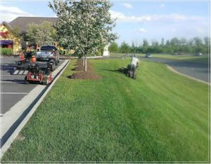 Altitude-Landscaping-Services-Lawn3