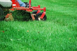 Altitude-Landscaping-Services-Lawn4