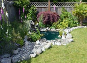 Altitude-Landscaping-Services-Water5